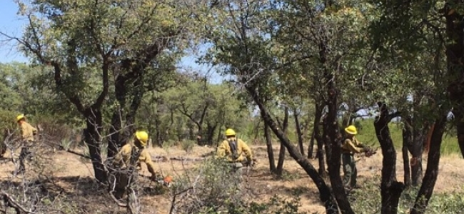 Fort Grant Wildland Fire Crew